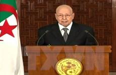 Algeria ấn định thời điểm bầu cử tổng thống trong tháng 12