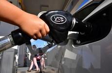 ECB cảnh báo tăng trưởng kinh tế bị tổn hại khi giá dầu tăng kéo dài