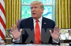 Tình báo Hạ viện Mỹ cáo buộc Bộ Tư pháp bao che Tổng thống Trump