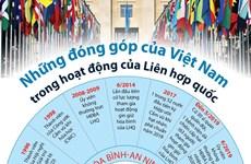 [Infographics] Những đóng góp của Việt Nam trong hoạt động của LHQ