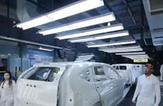 [Video] Honda sẽ loại bỏ tất cả các xe sử dụng diesel vào năm 2021