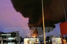 Miền Bắc nước Pháp cấm thu hoạch vụ mùa sau vụ cháy nhà máy hóa chất