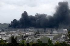 Pháp: Vụ cháy nhà máy hóa chất ở Rouen có thể làm phát tán dioxine