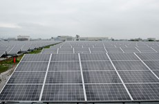 Năng lượng tái tạo cung cấp gần 50% sản lượng điện toàn cầu vào 2050