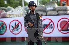 An ninh Myanmar thu giữ lượng thuốc lắc gần 2 triệu USD