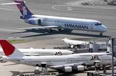 Mỹ: Hawaiian Airlines và Japan Air không được miễn trừ chống độc quyền