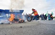 Hãng sản xuất lốp Michelin thông báo kế hoạch đóng cửa nhà máy ở Pháp