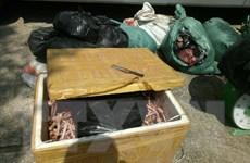 Phát hiện gần nửa tấn thực phẩm bẩn giấu trong ôtô khách tại Thanh Hóa