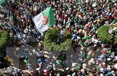 Hội đồng Bộ trưởng Algeria thông qua dự luật dầu khí gây tranh cãi