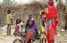 Sudan cho phép viện trợ nhân đạo ở các khu vực bị chiến tranh tàn phá