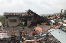 Nhật Bản tiếp tục hứng chịu mưa lớn sau siêu bão Hagibis
