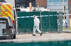 Cảnh sát Anh bắt giữ thêm các nghi can vụ 39 người chết trong xe tải