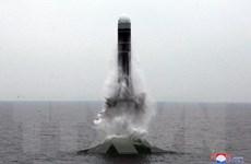 Đại sứ Pháp kêu gọi cứng rắn với vấn đề hạt nhân và tên lửa Triều Tiên