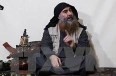 Mỹ chưa thể yên tâm về IS sau khi tiêu diệt được al-Baghdadi