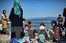 'Cuộc sống của người di cư trên các đảo Hy Lạp đang bên bờ thảm họa'