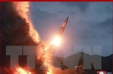 Chuyên gia phân tích hệ thống vũ khí mới của Triều Tiên