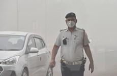 Ấn Độ: Hơn 40% cư dân New Delhi muốn chuyển đi nơi khác do ô nhiễm