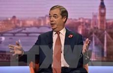 Anh: Đảng Brexit từ chối rút thêm ứng cử viên cạnh tranh với Công đảng