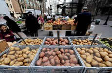 Mỹ chuẩn bị khởi động đợt hỗ trợ tài chính thứ 2 cho nông dân