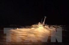 Cứu kịp thời 11 người trên tàu sắp chìm trong lúc thời tiết nguy hiểm