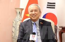 ''Quan hệ Việt Nam-Hàn Quốc đang phát triển mạnh mẽ toàn diện''