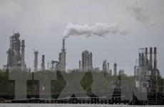 Chính sách năng lượng bền vững vì một thế giới ít phát thải carbon