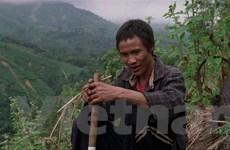 Phim Việt Nam tạo dấu ấn tại Liên hoan Truyền thông Singapore 2019