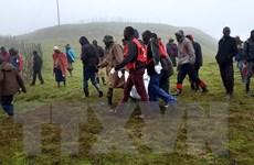 Số người thiệt mạng do sạt lở đất tại Kenya tiếp tục tăng mạnh