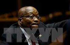 Nam Phi: Tòa bác đơn kháng cáo của cựu Tổng thống Jacob Zuma