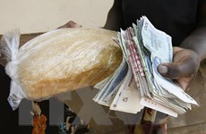 Zimbabwe đối mặt với nạn đói nghiêm trọng do chính con người tạo ra