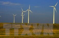 COP 25: Công nghệ xanh và kinh tế xanh là tương lai của thế giới