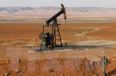 IEA cảnh báo tình trạng dư cung trên thị trường dầu mỏ toàn cầu
