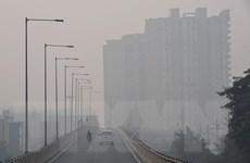 Ấn Độ: Khói bụi độc hại bao phủ New Delhi, người khỏe đổ bệnh