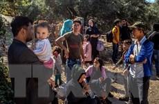 Chính phủ Pháp hỗ trợ Hy Lạp tiếp nhận 400 người xin tị nạn
