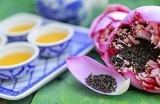 [Video] Trà ướp hương sen - gói trọn tinh hoa nghìn bông sen Hồ Tây