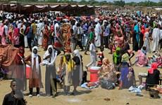 Sudan: Các bên gia hạn thỏa thuận ngừng bắn đến tháng 2 tới