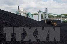 IEA: Nhu cầu than đá vẫn duy trì ổn định trong vài năm tới