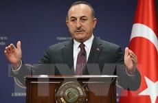 Thổ Nhĩ Kỳ cảnh báo việc Mỹ chấm dứt lệnh cấm vận vũ khí với Cyprus