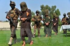 An ninh Afghanistan tiêu diệt hơn 80 phiến quân Taliban