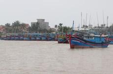 Các tỉnh từ Quảng Ninh đến Cà Mau chủ động ứng phó bão Phanfone