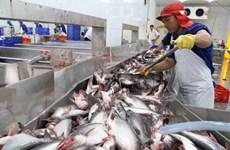 Nông sản Việt Nam tăng sức cạnh tranh trên thị trường thế giới