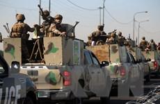 Mỹ và các đồng minh ngừng huấn luyện các lực lượng Iraq