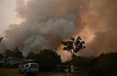 [Video] Khói mù do cháy rừng ở Australia đã lan tới tận Nam Mỹ