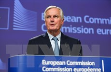 EU nêu các ưu tiên trong đàm phán quan hệ song phương với Anh