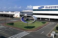 Renault Samsung đóng cửa một phần nhà máy ở Hàn Quốc do đình công