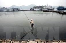 Hệ thống sông ngòi ở châu Á bị đe dọa bởi sự phát triển mất cân đối
