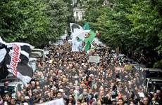 Quốc tế hỗ trợ gia đình các nạn nhân vụ rơi máy bay Ukraine ở Iran