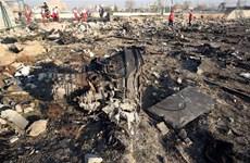 [Video] Các chuyên gia Ukraine bắt đầu tiếp cận hộp đen máy bay rơi
