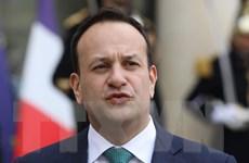 Ireland ấn định thời điểm tổng tuyển cử sớm vào tháng Hai tới