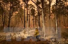 Nhật Bản điều 2 máy bay vận tải hỗ trợ dập tắt cháy rừng tại Australia